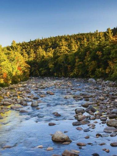 White Mountains River at RiverWalk Resort
