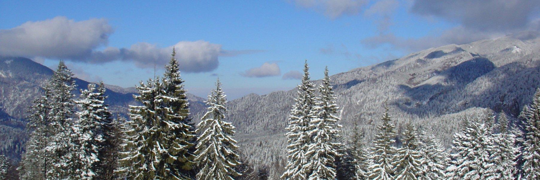 white_mountains_winter_riverwalk.jpg